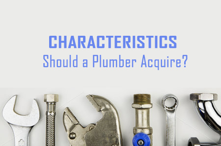 What Characteristics should a Plumber Acquire?